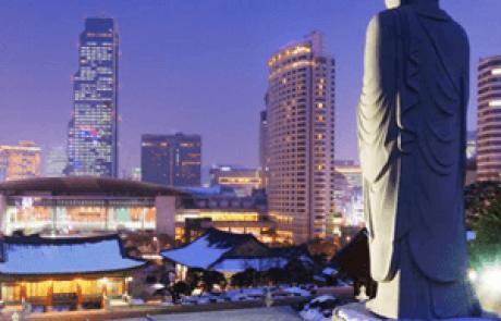 ירחון קוריאה אוג׳ 2016 – על כלבים ועסקים